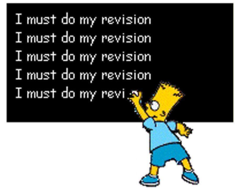 revision-simpsons.jpg